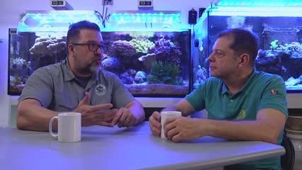 Iluminação LED em aquários