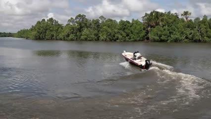 Dicas de pesca em rios com influência de maré