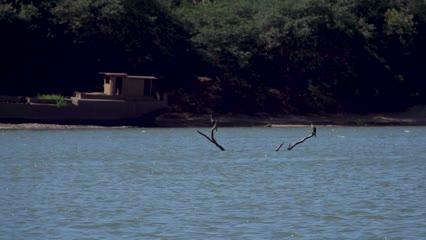 4º Festival de Pesca de Cachoeira Do Sul 2020