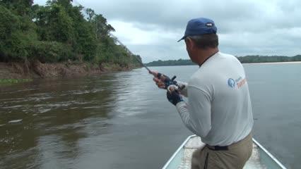 Desbravando o Rio Guaporé - Parte 2