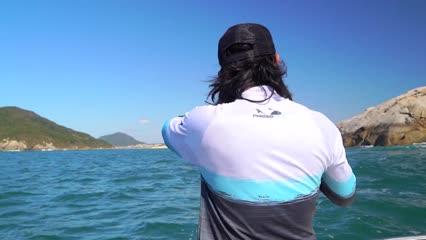 Pescaria de Anchovas em Porto Belo
