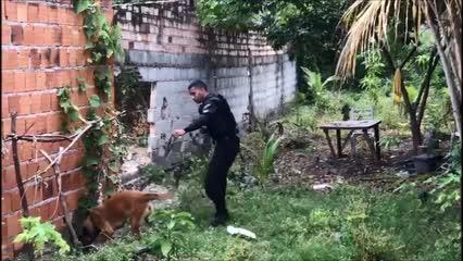 Polícia cumpre mandados de prisão na orla lagunar de Maceió