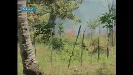 Aumentam os casos de incêndio em vegetação durante esta época do ano