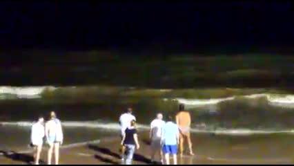 Tubarões teriam aparecido durante a noite na praia de Jatiúca, em Maceió