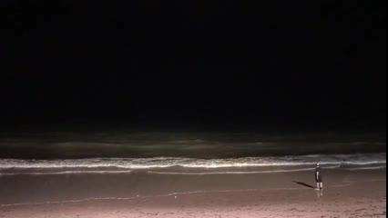 Tubarões teriam sido vistos por populares na praia de Jatiúca
