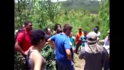 A produção de eucalipto cresceu em Alagoas