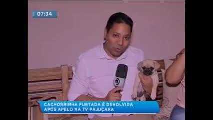 Homem furtou cachorro de dentro de uma residência no bairro do Poço