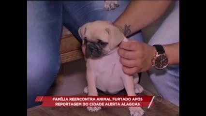 Família reencontra animal furtado após reportagem do Cidade Alerta Alagoas