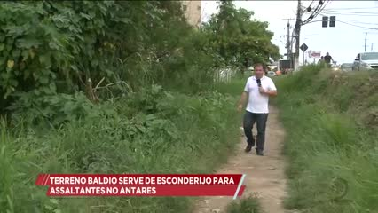 Terreno baldio serve de esconderijo para assaltantes no Antares