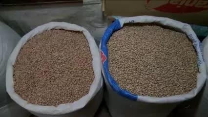 Consumidores reclamam da alta do preço do feijão