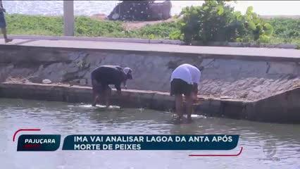 IMA vai analisar Lagoa da Anta após morte de peixes