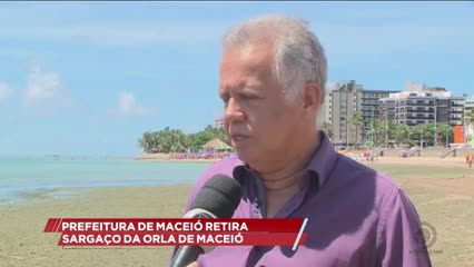 Prefeitura de Maceió retira sargaço da orla da capital