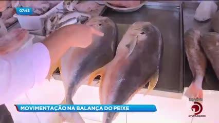 Movimentação na Balança do Peixe