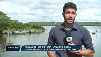 Poluição das lagoas Mundaú e Manguaba preocupa especialistas