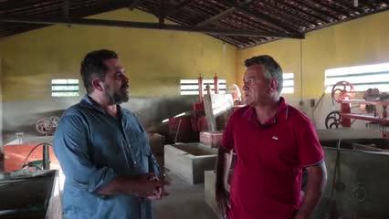 Expo Alagoas Genética reúne criadores, técnicos e estudantes no Parque da Pecuária
