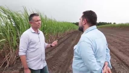 O Grupo Carlos Lyra começou a investir na meiosi para o cultivo de cana-de-açúcar