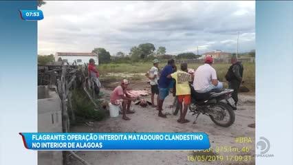 Operação em Ouro Branco flagra abate clandestino de animais