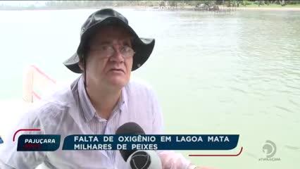 IMA recolhe amostras da Lagoa Manguaba para identificar causas da falta de oxigênio na água