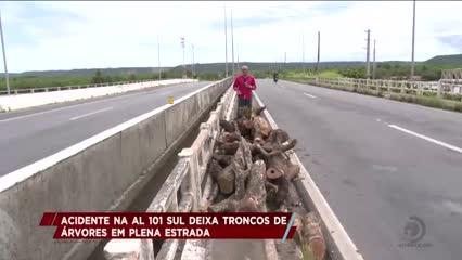 Acidente na AL 101 Sul deixa troncos de árvores em plena estrada